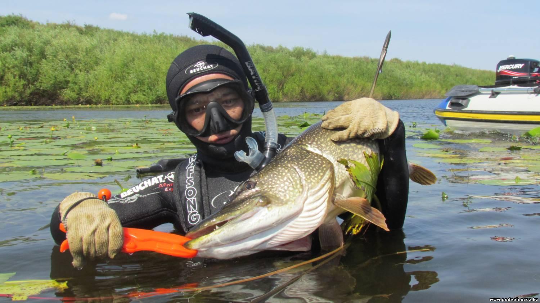 Чудесная рыбалка в Астрахани