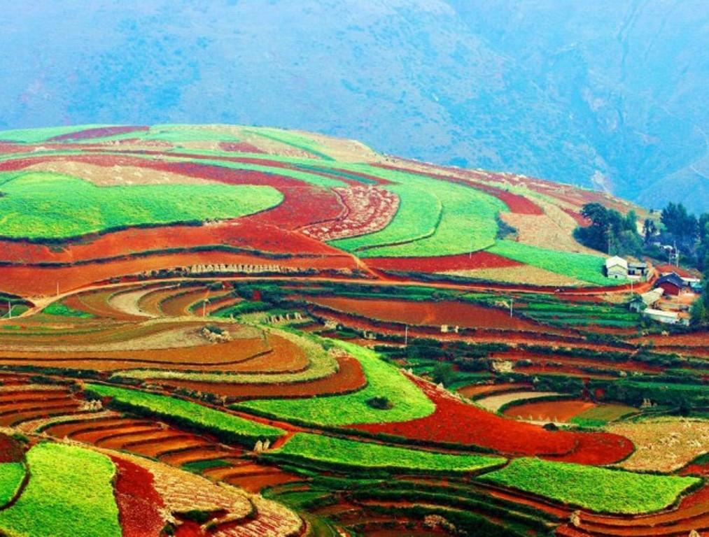 Рисовые террасы Юньнань