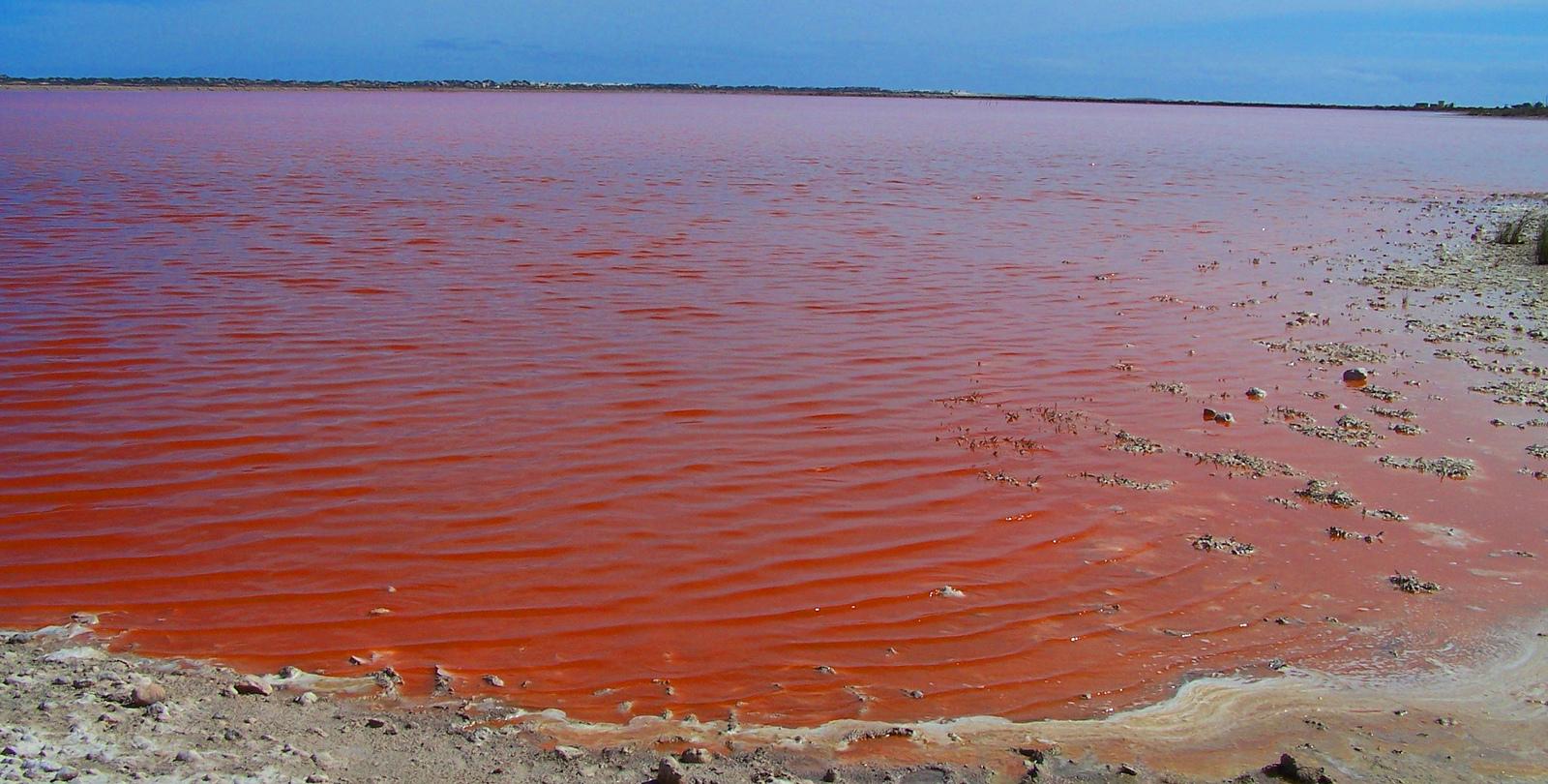 Розовое озеро в Австралии — Хиллер